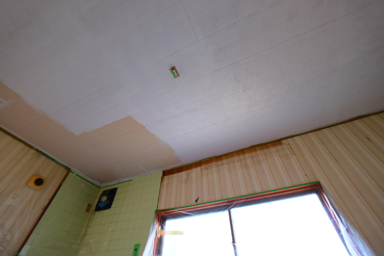 天井ペンキ塗りに挑戦